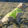 Insect Shield Reflective Vest size XL, neon