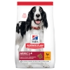 Hills Canine Adult Medium Chicken 14kg