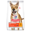 Hills Canine Adult Performance 14kg