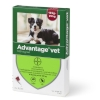Loppemiddel Advantage hund 10-25kg, -4x2,5ml